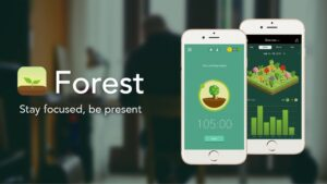 application_forest